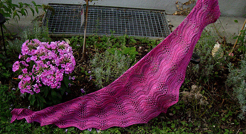 Sealineshawl_3_092013_medium