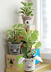 Plant_cozy_3_small