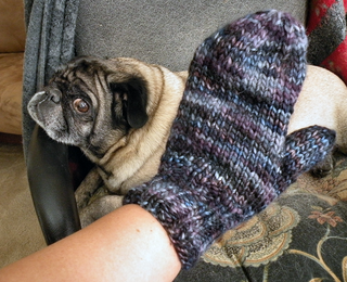 Moose_mittens_small2