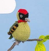 Woodpecker_small_small_best_fit