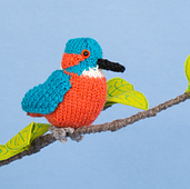 Kingfisher_small_small_best_fit