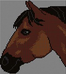 Bay_horse_small
