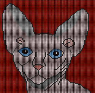 Sphinx_cat_small2