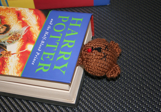 Bear_in_book_rect_small2