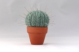 Cactus_rect_small_best_fit