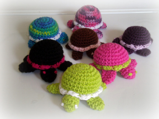 Turtles_small2
