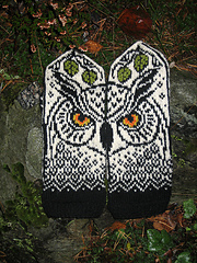 Forest_owl_marit_small