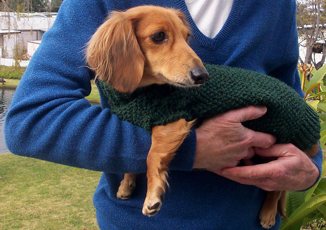 Ravelry Lenas Miniature Dachshund Dog Sweater Pattern By Marcia