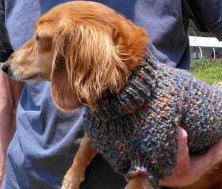Ravelry Lenas Cozy Brioche Miniature Dachshund Dog Sweater Pattern