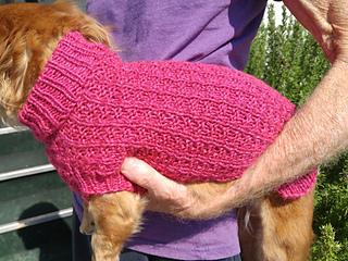 Ravelry Waffle Stitch Mini Dachshund Sweater Pattern By Marcia