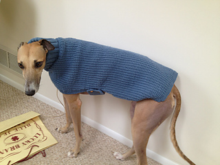 Ravelry: Whippets and Greyhound Sweaters pattern by Sandra ...