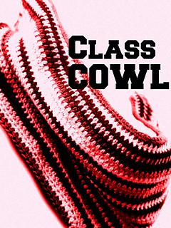 Classcowl_small2