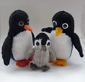 Porter_penguin_family_1b_small_best_fit