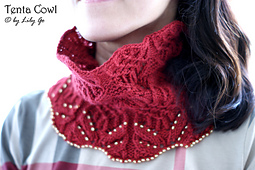 Dsc05324_tenta_cowl_small_best_fit