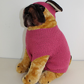 Dog_moss_stitch_coat_and_headband01_small_best_fit