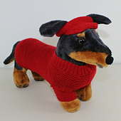 Small_dog_4ply_coat_visor_and_pixie_hat01_small_best_fit