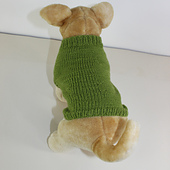Dog_coat_circular6_small_best_fit