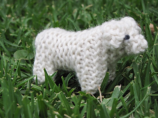 Nativity_lamb__sheep_small2