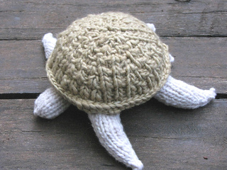 Turtle6_small2