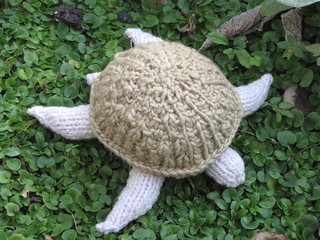 Turtle2_small2
