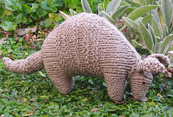 Armadillo5_small_best_fit
