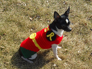 & Ravelry: Robin From Batman and Robin Dog Costume pattern by Manda Proell