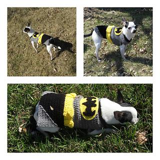 Manda Proell & Ravelry: Batman Dog Costume pattern by Manda Proell