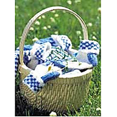 Gingham_small_best_fit