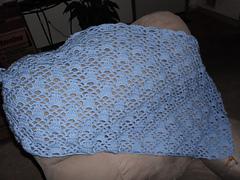 Blue_lace_progress_small