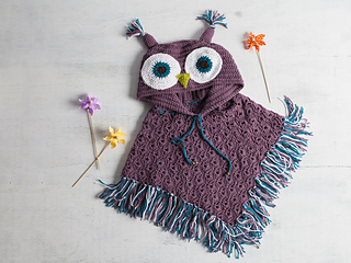20170622_498274_owlponcho_4654_sup_small2