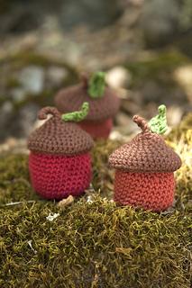 Eco_acorn_pots_small2