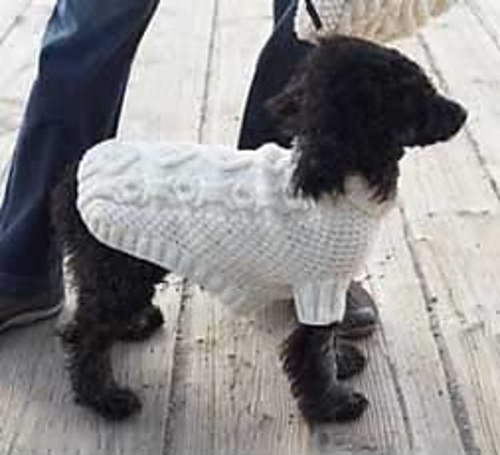 Ravelry Biscuits Bones Dog Coat Pattern By Patons