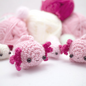 Axolotl_1_small_best_fit
