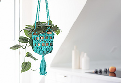Home_grown_plant_holder_small_best_fit