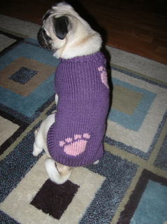 Izzy_s_paw_print_sweater_small2