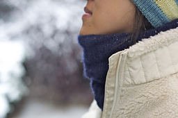 Cowl_1_small_best_fit