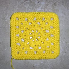 Sas2010_square_30_yellow_small