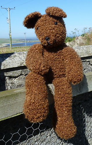 Ready_teddy_bear_001_medium