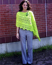 Take_it_to_the_next_level_poncho__old_pic__small_best_fit