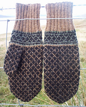 Herdsman_mittens_1_resized_small_best_fit