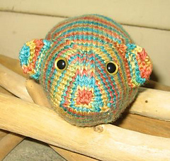 Guinea_pig_head_on_small