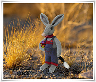 Bilby_main_2__2__small_best_fit