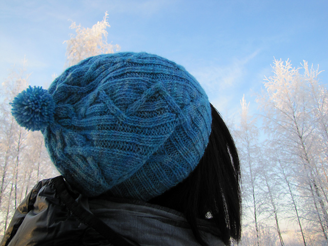 Handknit hat in Hedgehog fibers twist sock Design by Carol Feller
