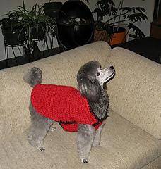 Shaunti-redsweater-123010-1_small