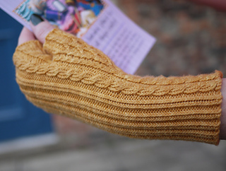 Palm_house_mitts1_small2