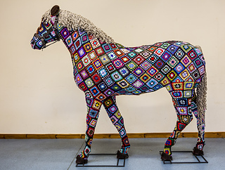Horse_project_3_small2
