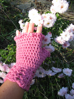 Kitty_love_or_knitting_071_small2