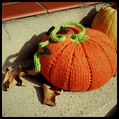 Cover_image_pumpkin_small_best_fit