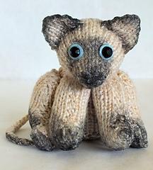 Cat_small