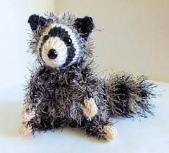 Raccoon_small